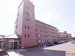 四条畷サカモトマンション[4階]の外観