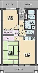 静岡県三島市長伏の賃貸マンションの間取り