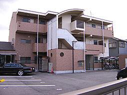 大阪府堺市南区檜尾の賃貸マンションの外観