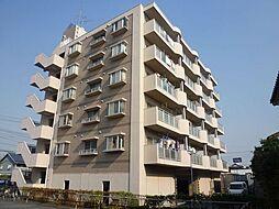 コスモ・プラザ[6階]の外観