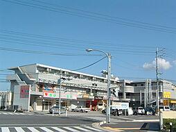滋賀県彦根市開出今町の賃貸マンションの外観