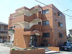 愛知県知多市朝倉町の賃貸マンションの外観
