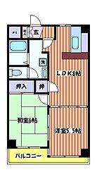 東京都小平市小川町1丁目の賃貸マンションの間取り