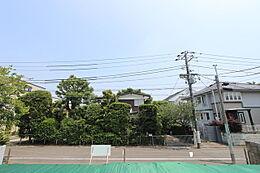 本物件の敷地内より、撮影。道路面から敷地が上がっており、開放感がございます。正面のお庭の樹木が綺麗です。