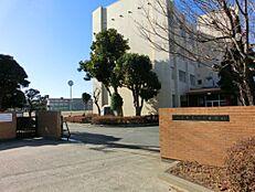 中学校水戸市立緑岡中学校まで867m