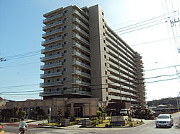 ミオカステーロ大網白里 6階