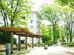 一橋学園駅 8.1万円