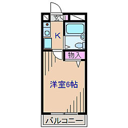 神奈川県横浜市港北区菊名3丁目の賃貸マンションの間取り