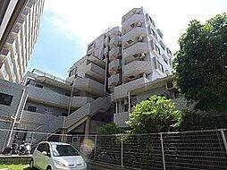 ライオンズマンション亀戸第7[4階]の外観
