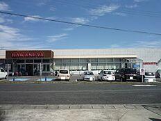 かわねや 南高野店(1294m)