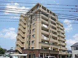 カズガリアーノ[6階]の外観