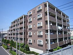ステラビュー新横浜[605号室]の外観
