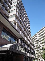 モンテベルデ横浜11階建