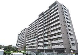 アネージュ・シティ勝田
