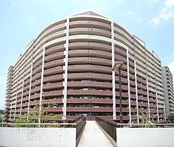 ダイアパレスUアリーナ 9階