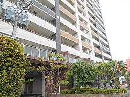 花畑駅 12.5万円
