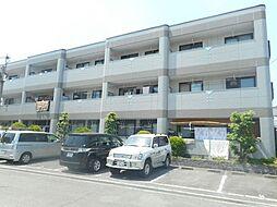 大阪府堺市中区八田西町3丁の賃貸マンションの外観