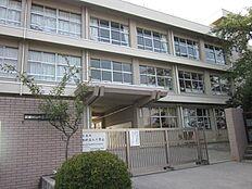 小学校武蔵村山市立 第三小学校まで1040m