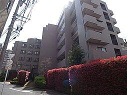 コスモ千鳥町ロイヤルフォルム bt[-503号室]の外観