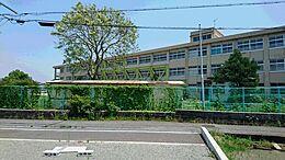 加古川市立加古川中学校まで1100m