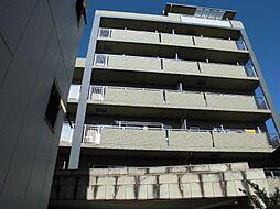 デセンシア柏[407号室]の外観