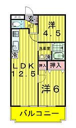 アビタシオン新柏[3階]の間取り
