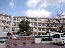 藤森中学校…徒歩約6分