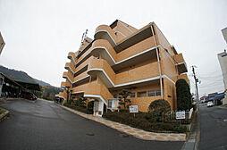 東山ハイツ[107号室]の外観