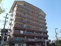 野崎スカイハイツ[303号室]の外観