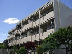 大井鹿島谷ハイツ[3階]の外観