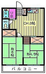 埼玉県川口市芝の賃貸マンションの間取り