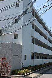 滋賀県長浜市大戌亥町の賃貸マンションの外観