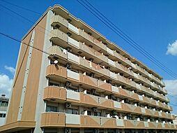 アネックス稲永駅前[0311号室]の外観