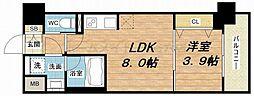 レオンコンフォート本町東III[12階]の間取り