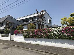 徳島県徳島市上八万町西山