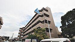 大阪府泉大津市菅原町の賃貸マンションの外観