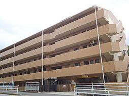 シルキー橋本(7001-8)