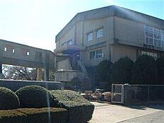 土浦市立真鍋小学校(801m)