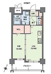 クラシオン小笹山手5番館 5階1LDKの間取り
