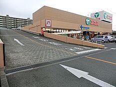 エコス東浅川店まで385m