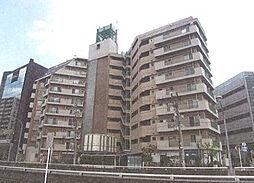 川口 ファミリー マンション