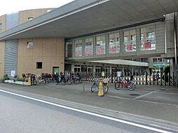 [一戸建] 神奈川県相模原市南区古淵5丁目 の賃貸【/】の外観