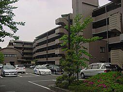 京都府宇治市菟道門前の賃貸マンションの外観