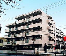 コスモ東岩槻