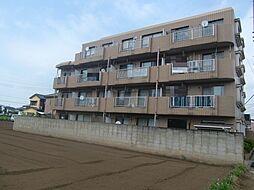ロイヤルガーデン上福岡