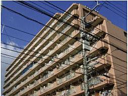 愛媛県松山市三番町6丁目の賃貸マンションの外観