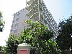 サンフラワーハイツ南港はなのまち住宅31号棟