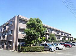 コスモ鎌ケ谷ガーデンスクエア A号棟