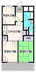 東京都練馬区西大泉5丁目の賃貸マンションの間取り