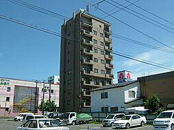 サングリーン東豊[7階]の外観